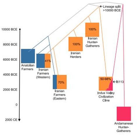 Rakhigarhi, DNA, Aryan Invasion theory, Indus